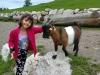 Aurach bei Kitzbuhel, Austria, Wild Park Aurach