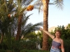 El Gouna - Steingerberger Resort: la cules