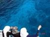El Gouna - snorkeling:costume de baie traditionale