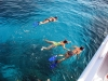El Gouna - snorkeling