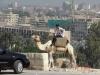 Cairo - politia motorizata