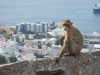 Croaziera, Gibraltar