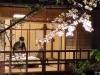 Japonia, Kyoto, Shimbasi - Restaurant