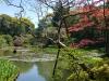 Kyoto6_1-15