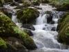 Pestera Sura Mare,valea pârâului Ponor, satul Ohaba-Ponor