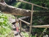 Parcul National Ceahlau  -Spre Cascada Duruitoarea