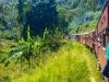 Sri Lanka, Tren Ella - Nuwara Eliya