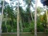 Sri Lanka, plecare de la Villa Alexia