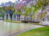 Japonia, Tokyo - Yoyogi Park