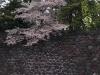 Japonia, Tokyo - Palatul Imperial