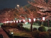 Japonia, Tokyo - Shinto Shrine